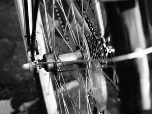 Fahrradladen und Fahrradgeschäft in Dußlingen