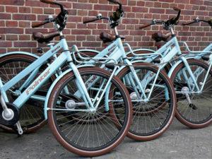 Fahrradladen und Fahrradgeschäft in Bad Gandersheim