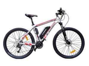 E-Bikes kaufen, E-Bike-Werkstatt und E-Bike-Leasing in Limeshain